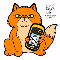 GPS Cat